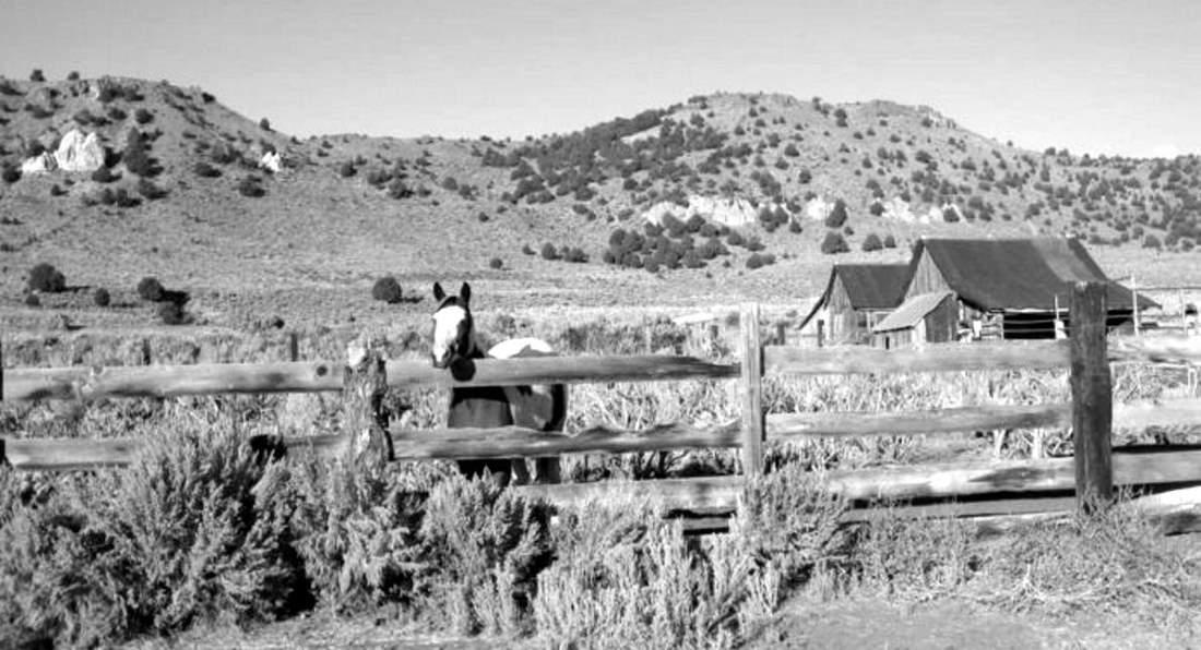 Старое ранчо в Неваде