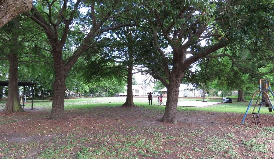 Дети в парке Банка Джонсона